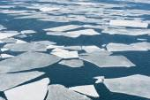 Breaking ice floe of sea — Stock Photo