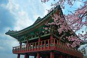 Buddhist temple at Jeju Korea — Stock fotografie
