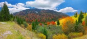 Bright sunny autumn in the mountains — Stock Photo