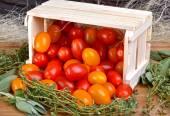 Italian tomatoes in box — Stock Photo