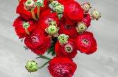 Mazzo rosso variopinto dei fiori primavera ranuncolo — Foto Stock