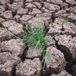Soil arid , season water shortage — Stock Photo #70297597
