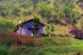 Purple House at Ma Rung Lu Quan in Da Lat, Vietnam — Stock Photo