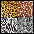 Illustration with set of leopard, giraffe and zebra skin texture — Stock Vector #70527571