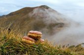 Donuts with mountains in the background. — Stock Photo