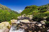 Paesaggio di montagna estate. — Foto Stock