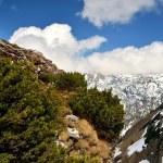 Mountain landscape. — Stock Photo #75615453
