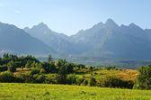 Summer mountain landscape. — Stock Photo