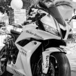 Постер, плакат: Honda 2007 CBR 1000RR white motorcycle