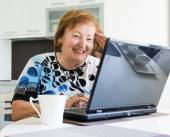 Elder woman with a computer — Stock Photo