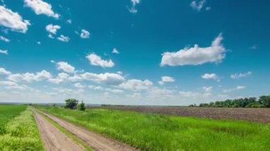 Dirt road through the field, green grass, clouds — Vídeo de Stock