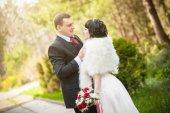 La sposa e lo sposo in un bellissimo parco — Foto Stock