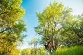 Беременных пара деревья — Стоковое фото