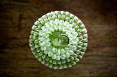 Wedding rings with flower decoration — Fotografia Stock