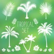 Tropical trees set — Stock Vector #70509171