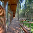 Chalet in the woods — Stock Photo #70967485