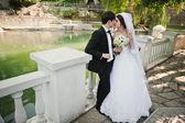 Young beautiful wedding couple near lake — Stock Photo