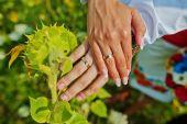 Hands couple  — Stock Photo