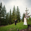 Wedding couple  at the tree — Stock Photo #73551639