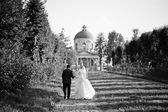Young wedding couple on background old castle — Stock Photo