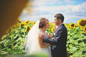 Newlyweds at the field of sunflowers — Stock Photo