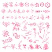 Vector set of decorative floral elements — Stock Vector