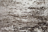 Grunge Texture of white wall with cracks — Stockfoto