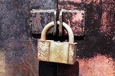 Vintage rusty padlock metal gates — Stock Photo