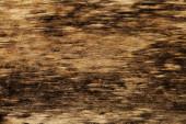 Antika ahşap doku grunge arka plan — Stok fotoğraf
