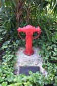 Red fire hydrant wśród drzew i roślin — Zdjęcie stockowe