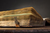 Old book on old table — Stock Photo