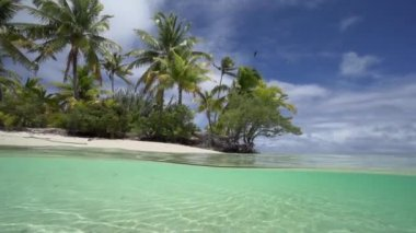 Beautiful tropical beach — Stock Video