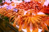 Variety of Crustaceans on counter — Stock Photo