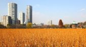 View of Tokyo from Ueno Park — Stock Photo