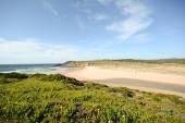 Algarve: View to beach Praia da Amoreira in spring, Aljezur Portugal — 图库照片