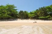 Ilha Grande: Beach Praia Lopes mendes, Rio de Janeiro state, Brazil — Stock Photo
