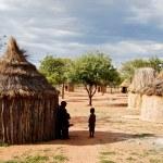 Himba village with traditional huts near Etosha National Park in Namibia, Africa — Stock Photo #84555510