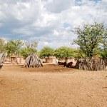 Himba village with traditional huts near Etosha National Park in Namibia, Africa — Stock Photo #84555578