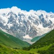 Beautiful grassy valley and snow-capped mountains in Georgia — Stockfoto #82543388