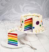 Colorful rainbow layered birthday cake. — Stock Photo