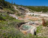 Parco nazionale di yellowstone — Foto Stock