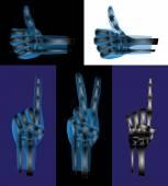 Hand gestures or signs — Stockvektor