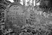 Jewish cemetry — Stock Photo