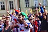 Czech fans — Stok fotoğraf