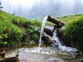 Carpathians, source of spring water, near mount Petros — Stock Photo