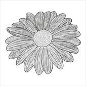 Vector black and white illustration of a flower — Stock Vector