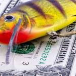 Fishing bait on money background — Stock Photo #71491535