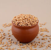 Wheat grains in clay pot — Stock Photo