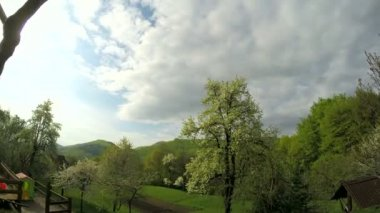 Cloud, field of spring grass and mountain — Stock Video