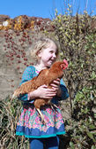 Pretty young girl holding a brown hen — Stock Photo